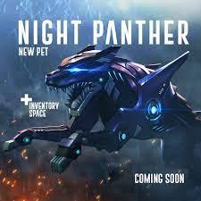 Night Panther
